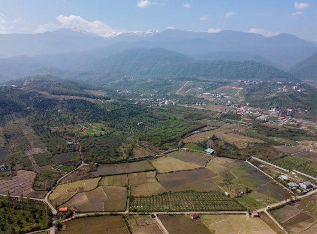 نکات طلایی هنگام خرید زمین کشاورزی